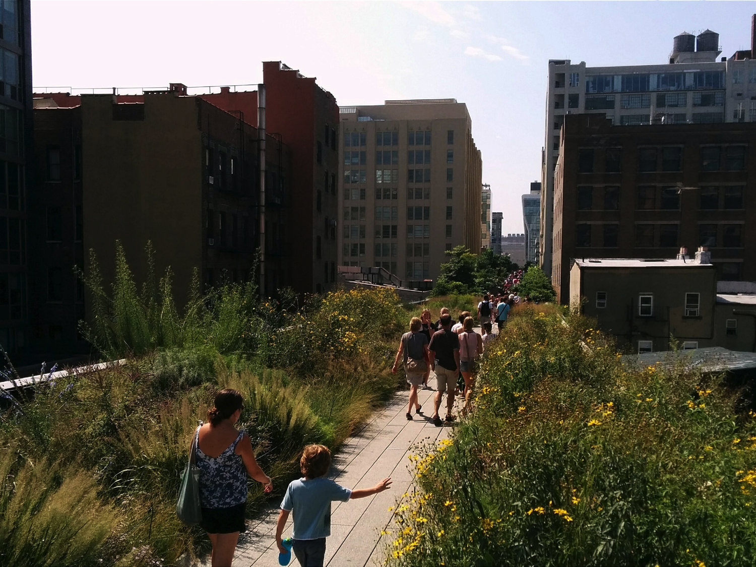 The High Line, New York City by Mark Skarratts via Flickr (CC BY 2.0)